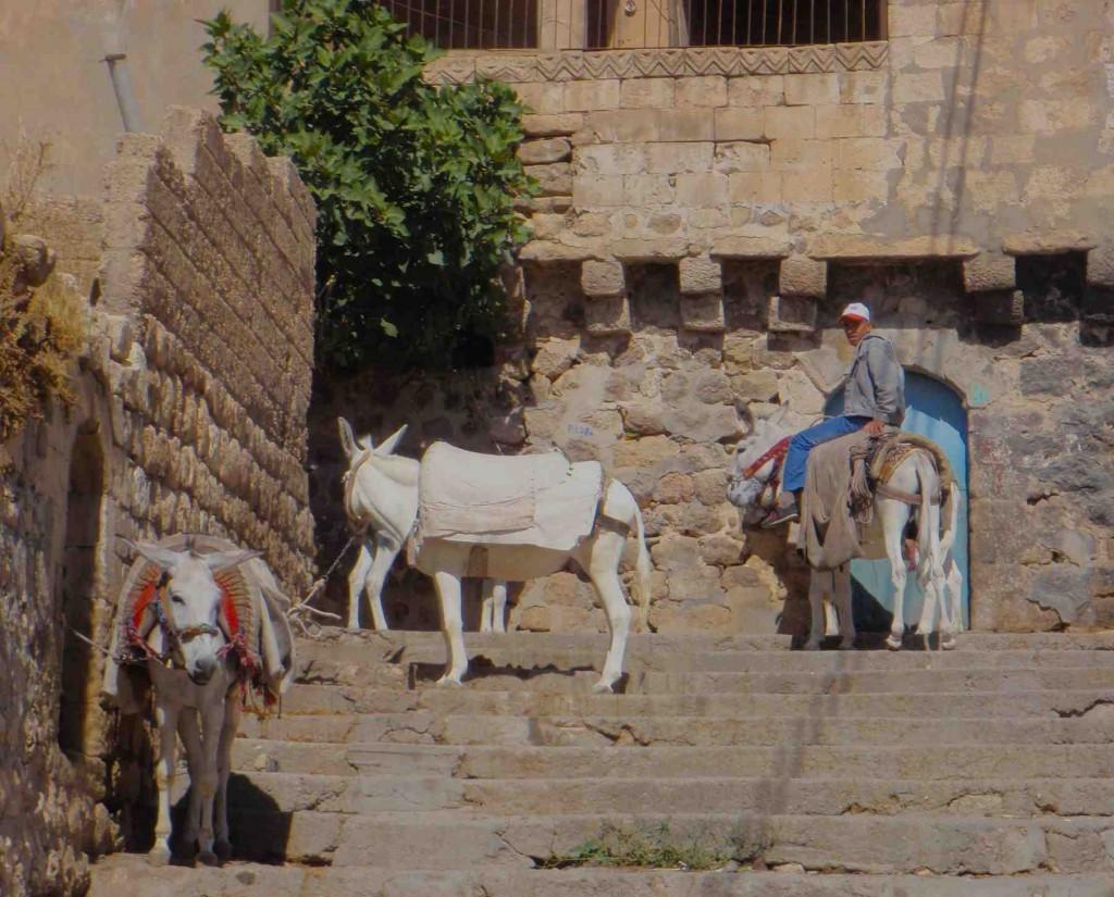 Mardin transportation