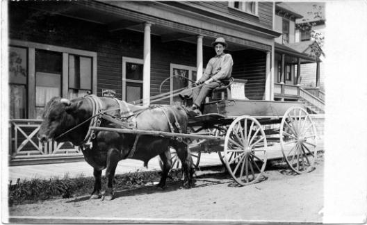 NW Bullcart
